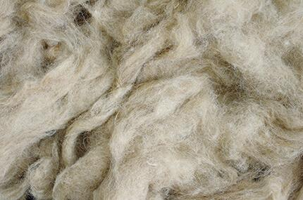 Maestro Raw Materials: Alpaca wool