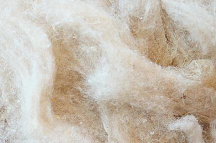 Cherubin Raw materials: Tussah Silk